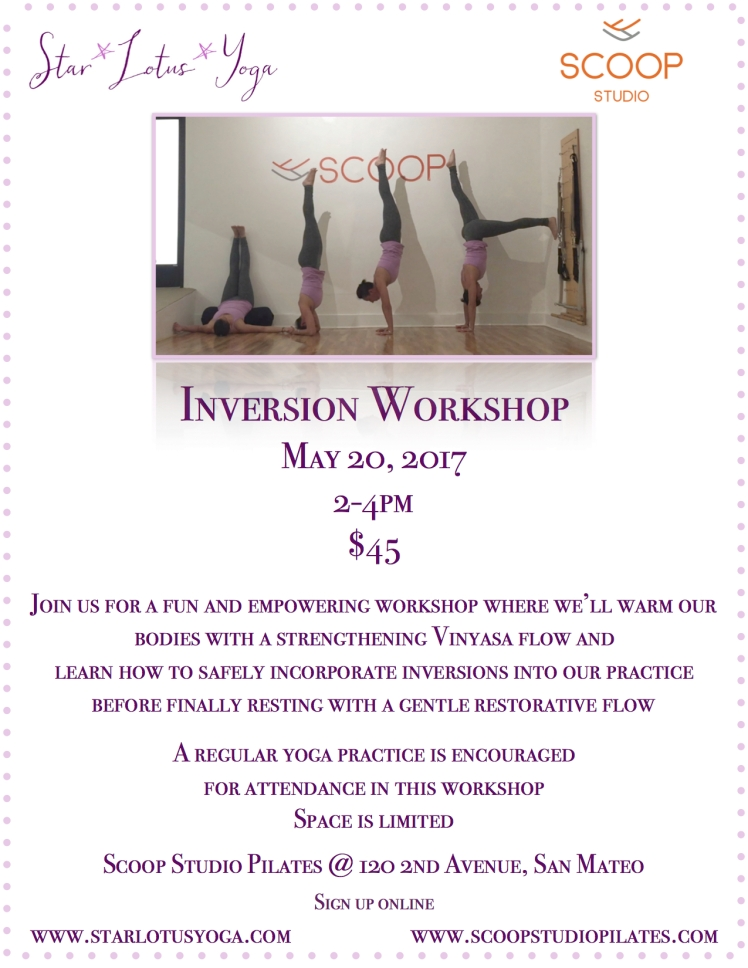 Scoop Inversion Workshop jpeg